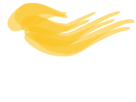 Ecoex Pisos